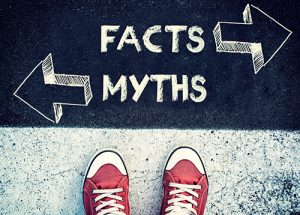 "Middlesex county gutter cleaning, Monmouth county gutter cleaning, pair of red sneakers below words ""Facts Myths"""