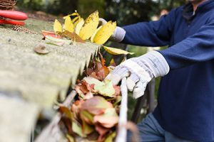 Gutter cleaning in Monmouth County