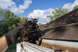 east brunswick gutter cleaning service