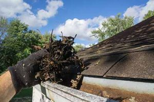 Gutter cleaning South River, South River gutter cleaning
